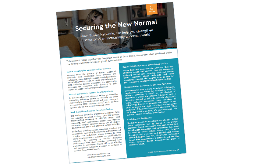 Presentation image for Securing the New Normal