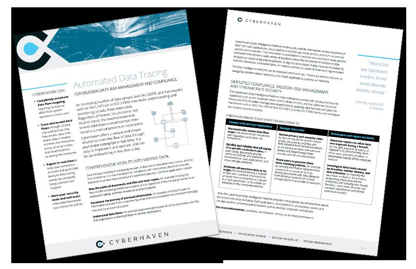 Presentation image for Cyberhaven Datasheet Template